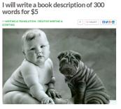 book description 1