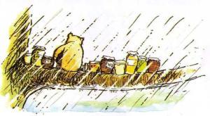 Pooh in rain