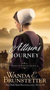 Amish Romance Novel